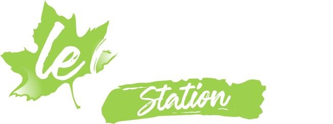Le Chambon station